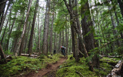 BC Bike Ride: Smithers and Terrace