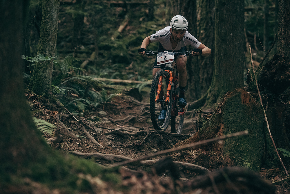 Downhill in the forest