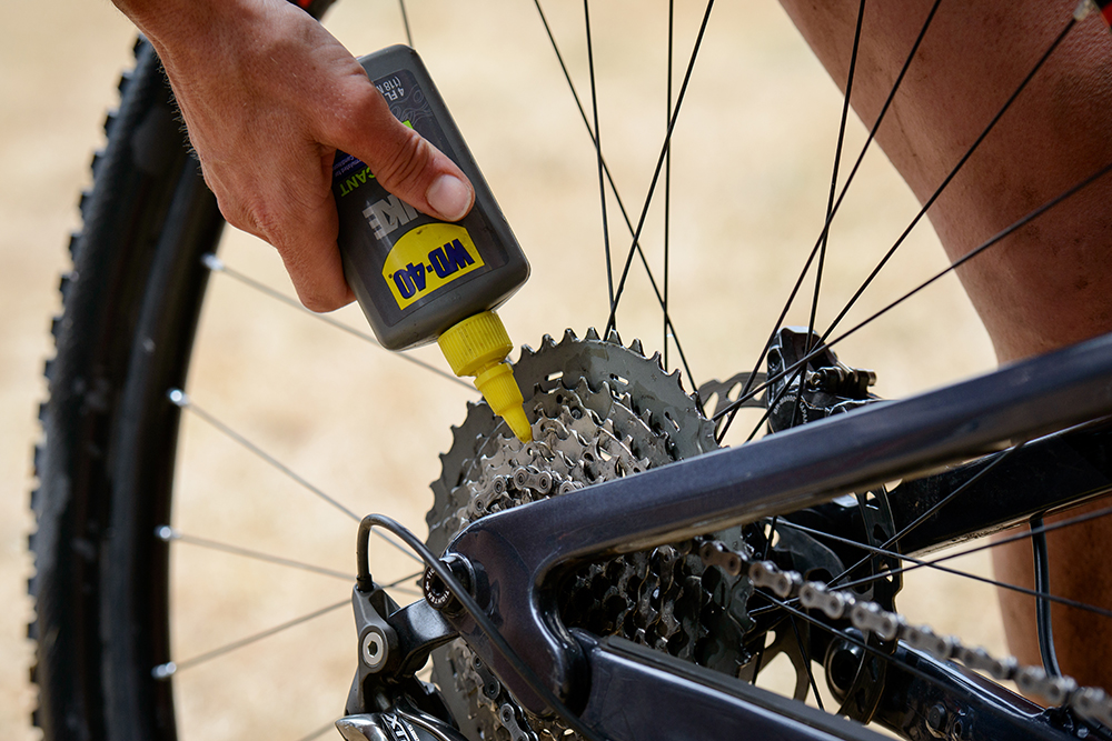WD 40 on chain