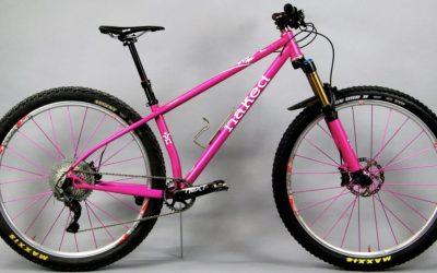 Danielle Hagan's Pink 29'er